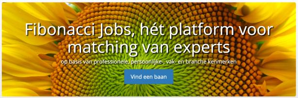 banner-fibonacci-jobs